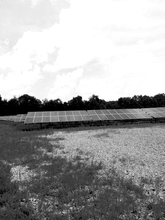 Figure 3 - Typical solar panel array in an open field-cmyk-0Sat